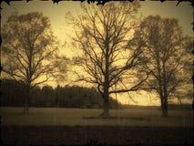 Retro countryside view Stock Photo