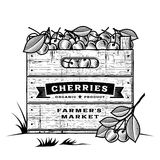 Retro crate of cherries black and white Royalty Free Stock Photography