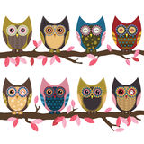 Retro Cute Owl Stock Image