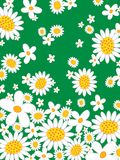 Retro daisies flower power Stock Image