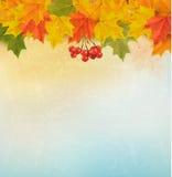 Retro de herfstachtergrond met kleurrijke bladeren Stock Fotografie