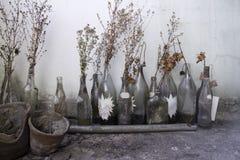 Retro de vidro velho de Gallary Imagem de Stock Royalty Free
