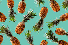 Retro design tropical style concept.Pattern with hipster pineapple summer decoration background stock photo