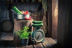 Retro drewniana piwnica z świeżymi ziele i warzywami fotografia stock