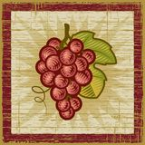 Retro druivenbos Stock Foto