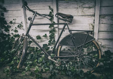 Retro dutch bike. Retro dutch men's bike in a museum Royalty Free Stock Photography