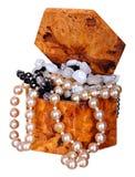 Retro een kist met de halsband van de Parel Stock Foto