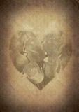 Retro een romantische achtergrond, oud document Stock Foto