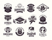 Retro- Eignungs-Embleme lizenzfreie abbildung