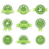 Retro emblem för grön ekologi Royaltyfri Fotografi