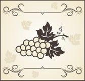 Retro engraving of grapevine Stock Photos