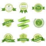 Retro etikett för grön ekologi Arkivbild