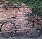 Retro- Fahrrad mit Korb Stockfoto
