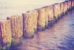 Retro filtrerad suddig abstrakt bakgrund, grunt djup av fie Royaltyfria Bilder