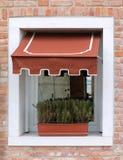 Retro finestra con conopy Immagine Stock Libera da Diritti