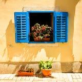 Retro finestra Mediterranea con i fiori Fotografia Stock Libera da Diritti