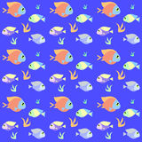 Retro fiskmodell med provkarta Arkivbilder