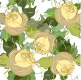 Retro floral background. Royalty Free Stock Images