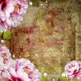 Retro floral background Stock Photo
