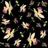 Retro floral background. Orchid. Stock Photos