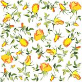 Retro floral background. Rose. Royalty Free Stock Photography