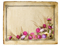 Retro floral frame. Sheet of old yellowed paper with floral frame isolated on white background Stock Photos