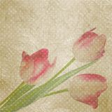 Retro floral with polka dot tulips. EPS 10 Royalty Free Stock Images
