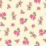 Retro floral seamless stock image