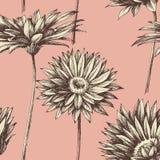 Retro floral seamless pattern Stock Photos