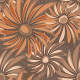 Retro floral seamless texture with asters Stock Photos