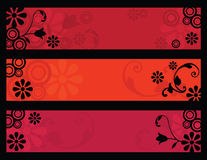 Retro flower banners Stock Image