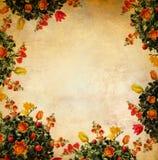 Retro flower. Flowers retro frame Stock Photography