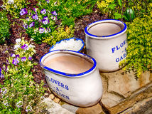 Retro Flower Pots in Blue and White. Retro Flower Pots on stone wall empty with Pansies with stone wall Royalty Free Stock Images