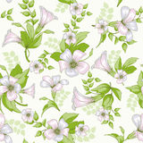 Retro flower seamless pattern - wildflowers Royalty Free Stock Images