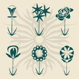 Retro flowers. Collection, vector isolated objects for easy design Royalty Free Stock Photos