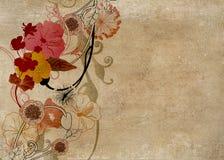 Retro flowers. Illustration of flowers on vintage paper Stock Image