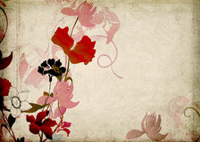 Retro flowers. Illustration of flowers on vintage paper Stock Photos