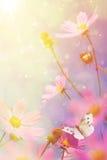 Retro flowers background Stock Photo