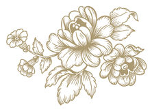 Retro Flowers. Vector on white background Royalty Free Stock Photography