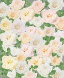 Retro flowers,Vintage Flowers background royalty free stock photography