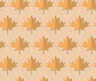 Retro fold light brown maple leaves Stock Photos