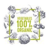 Retro fondo dell'alimento biologico Immagini Stock Libere da Diritti