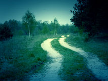 Retro Forest Road Royalty Free Stock Images