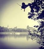Retro foto van een stadsmening door de bomen Stock Foto's