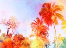 Retro fotobakgrund med palmträd Arkivbild