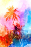 Retro fotografia drzewka palmowe Fotografia Royalty Free
