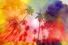 Retro fotografia drzewka palmowe Zdjęcie Stock