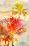 Retro fotografia drzewka palmowe Obrazy Stock