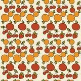 Retro- Fruchthintergrund Lizenzfreies Stockfoto