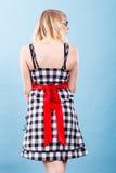 Retro gecontroleerde kleding met rode boog Stock Afbeelding